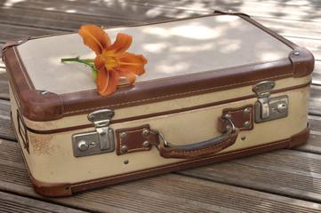 fleur sur  valise ancienne