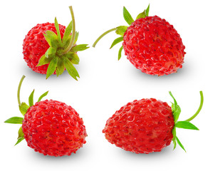 ripe wild strawberry