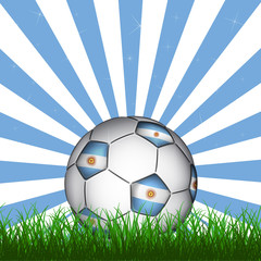 Argentine soccer ball, vector