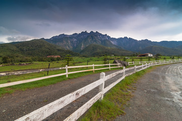 Mount Kinabalu from dairy farms