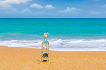Bottle with tree  and butterfly inside on a beach