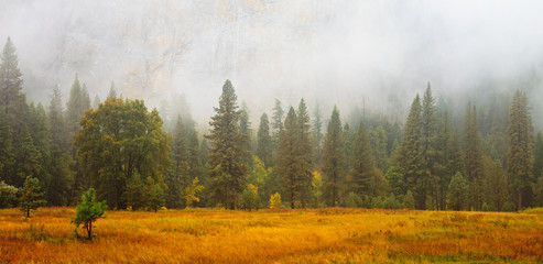 Yosemite Valley Scene with Fog
