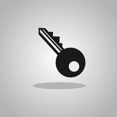 Vector Key Icon