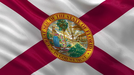 US state flag of Florida waving in the wind - loop