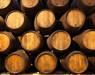Row of wooden barrels of tawny portwine