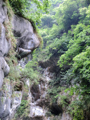 Taiwan Tropical Mountainscape