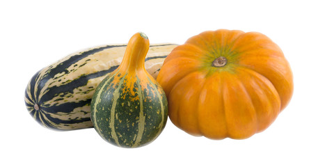 Three different pumpkins
