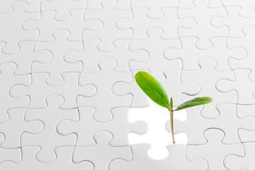 パズルから成長する新芽