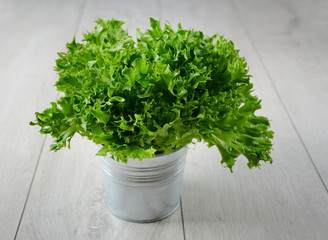 Leaf Salad in a bucket