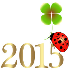 silvester,jahresanfang,happy new year,2015,sylvester
