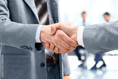 canvas print picture Close up of businessmen shaking hands