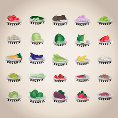 Vegetables Icons Set - Isolated On Gray Background