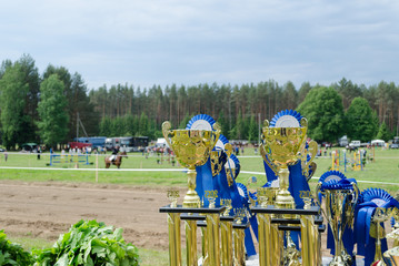 Horse racing cups awards prepared for winners