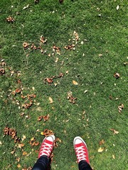 red shoes on the green grass