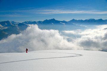 Skier in winter landscape