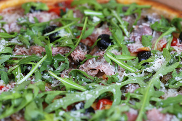 Pizza with arugula, close-up