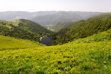Lac de montagne - lac du Schiessothried