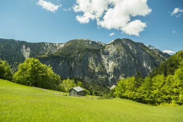Kulturlandschaft in den Alpen