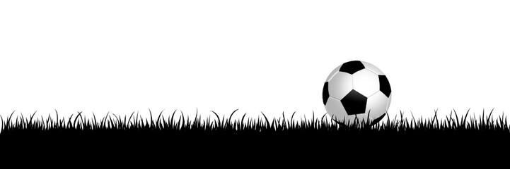 football,vector