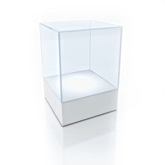3D Empty glass box for exhibit