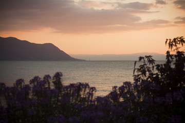 View of Geneva Lake, in Montreux, at sunset - Switzerland