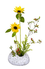 Ikebana vor weißem Hintergrund