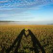 ombre d'un coeur