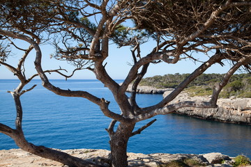 Bucht von Cala Pi Mallorca