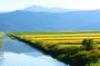 sulu tarım alanları
