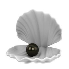 Pearl inside seashell