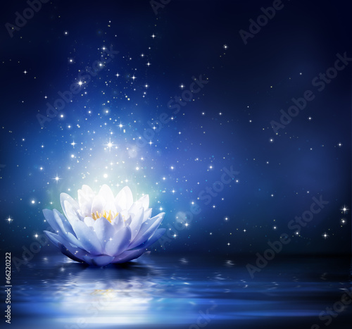 Staande foto Lotusbloem magic flower on water - blue