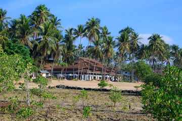 On a tropical island. Philippines.