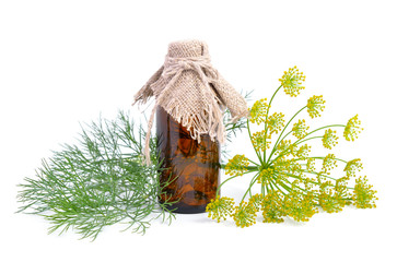 Dills essential oil in pharmaceutical bottle.