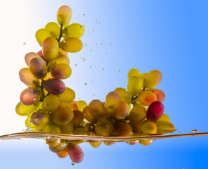 grapes fall into the water