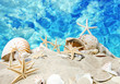 Karibik: Sand, Meer, Muscheln und Seesterne :)