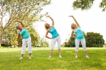 People doing flexibility exercises