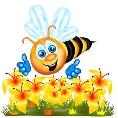 ape regina in cerca di miele