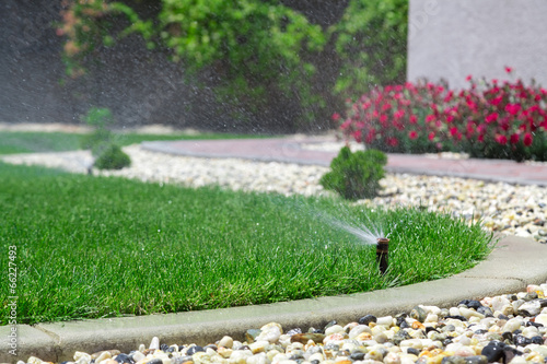 canvas print picture Sprinkler watering grass