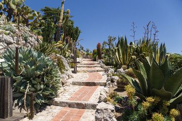 Eze-Village, France. View of the Exotic garden