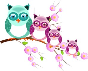Four owls on twig of tree