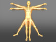 Menschliche Form