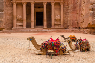 Petra. Camels at the Treasury
