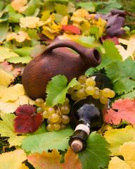 Wine bottle, crock and grape