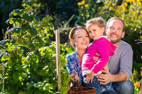 canvas print picture Familie bei der Gartenarbeit