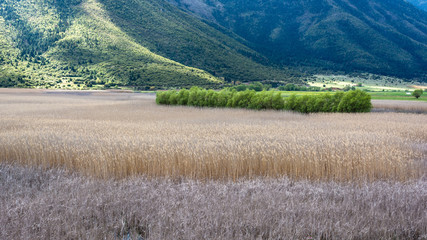 Stymfalia Wetland in Peloponnese, Greece
