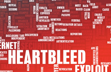 Heartbleed Exploit