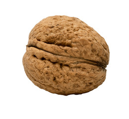 Single walnut isolated on a white background.