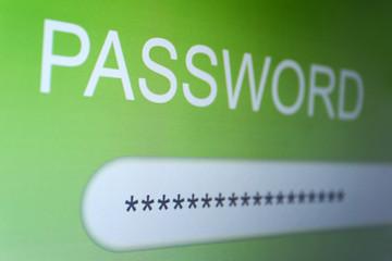 Password on monitor screen