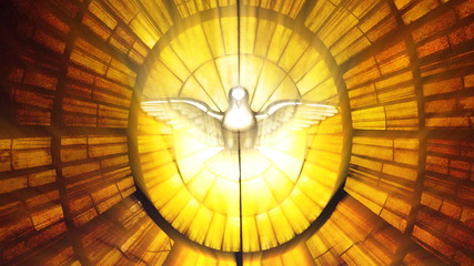 Stained Glass Vatican dove (Loop)