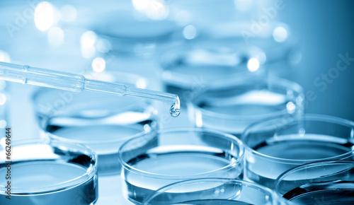 Leinwanddruck Bild Cell Culture Plate in bio laboratory